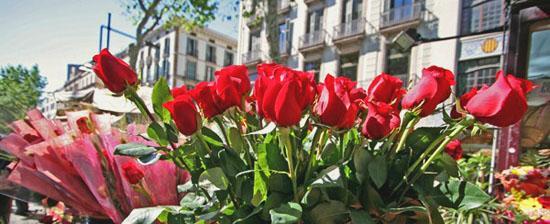 Le rose simbolo