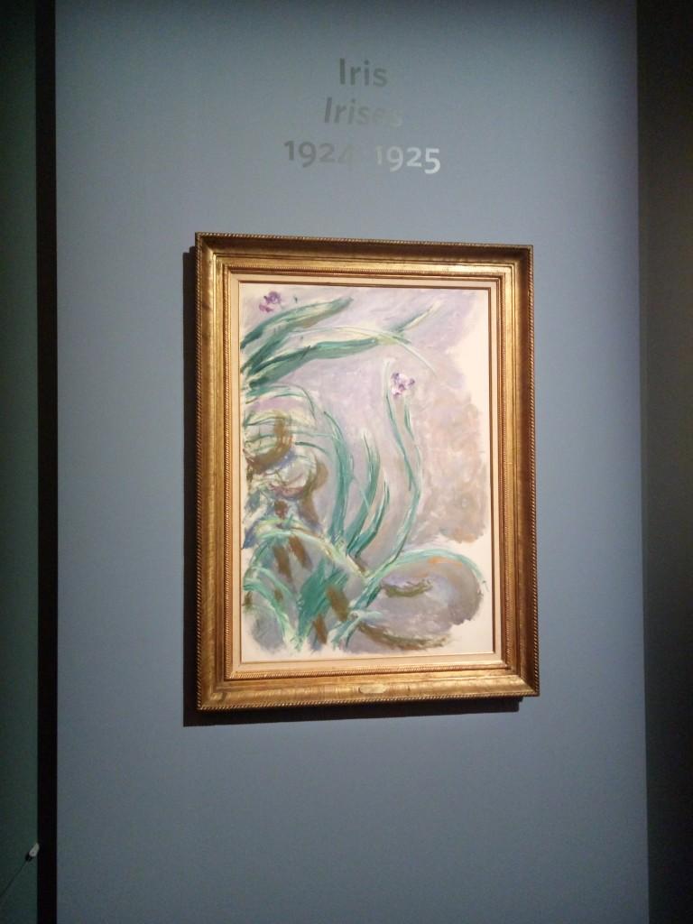 Monet, Iris